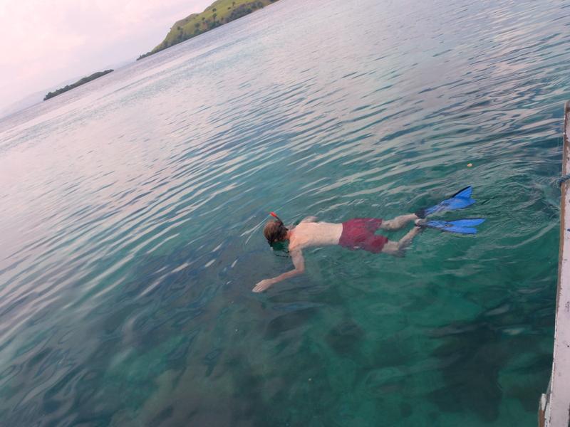28-snorkelen-bij-pink-beach-prachtige-vissen-en-koraal