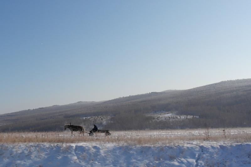 35-met-paard-en-wagen-onderweg-van-of-naar-huis