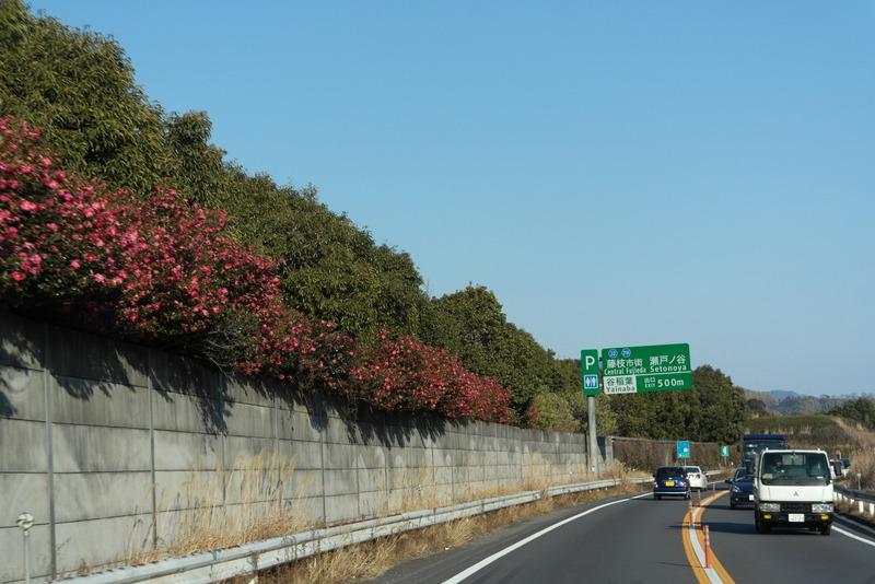18-onderweg-nabij-fujieda-route-1