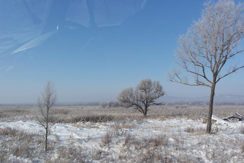 08-open-vlaktes