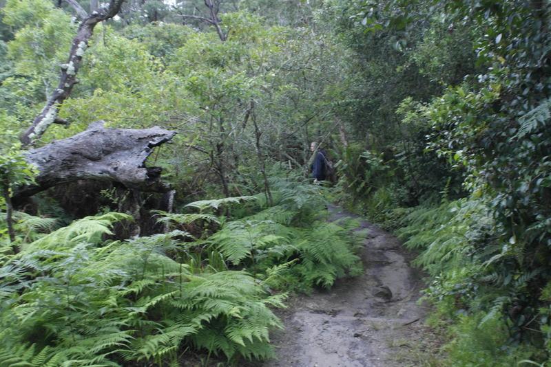 23-ondanks-wind-en-regen-heerlijke-wandel-temperatuur