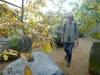 25 symboliek van natuurlijke groei uit rotsen
